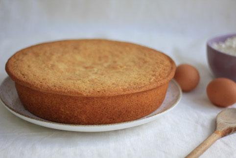 gâteau au yaourt en gros plan